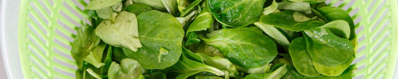 Salatschleuder mit Salat
